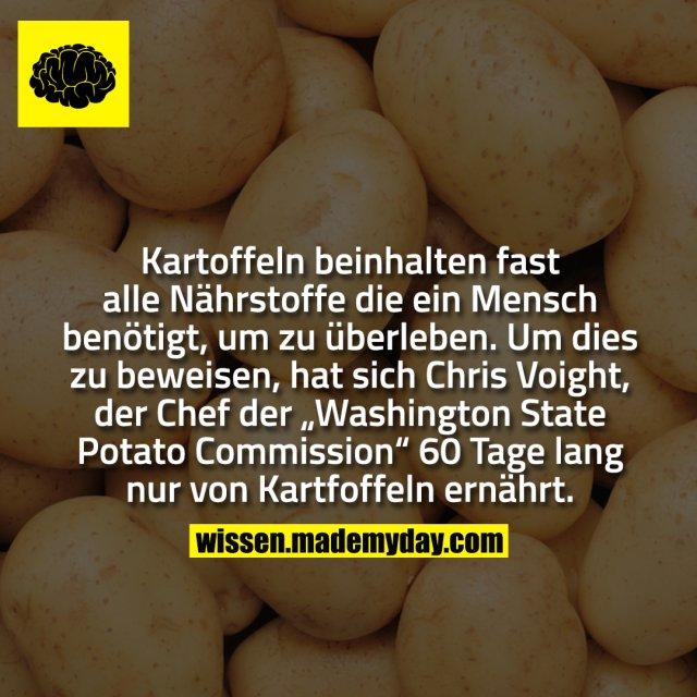 """Kartoffeln beinhalten fast alle Nährstoffe die ein Mensch benötigt, um zu überleben. Um dies zu beweisen, hat sich Chris Voight, der Chef der """"Washington State Potato Commission"""" 60 Tage lang nur von Kartfoffeln ernährt."""