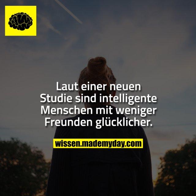 Laut einer neuen Studie sind intelligente Menschen mit weniger Freunden glücklicher.