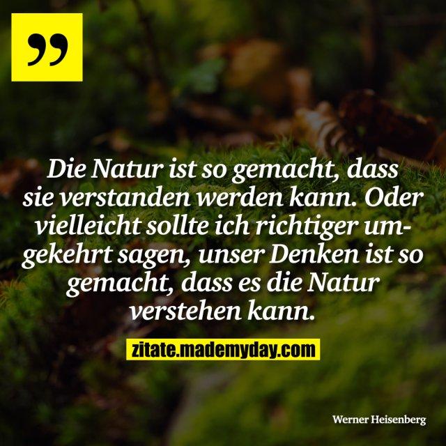 Die Natur ist so gemacht, dass sie verstanden werden kann. Oder vielleicht sollte ich richtiger umgekehrt sagen, unser Denken ist so gemacht, dass es die Natur verstehen kann.