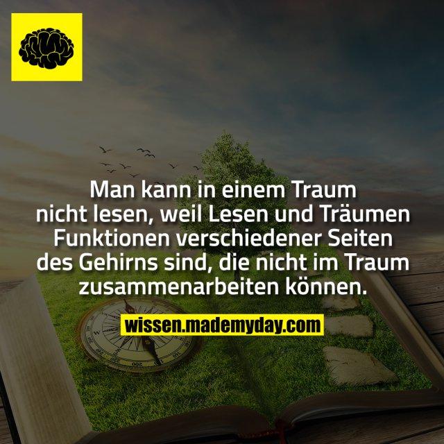 Man kann in einem Traum nicht lesen, weil Lesen und Träumen Funktionen verschiedener Seiten des Gehirns sind, die nicht im Traum zusammenarbeiten können.