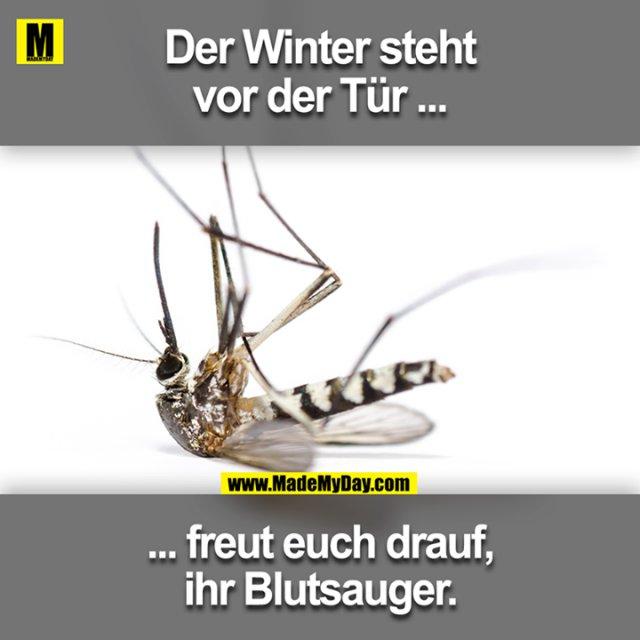 Der Winter steht vor der Tür ...<br /> ... freut euch drauf ihr Blutsauger.