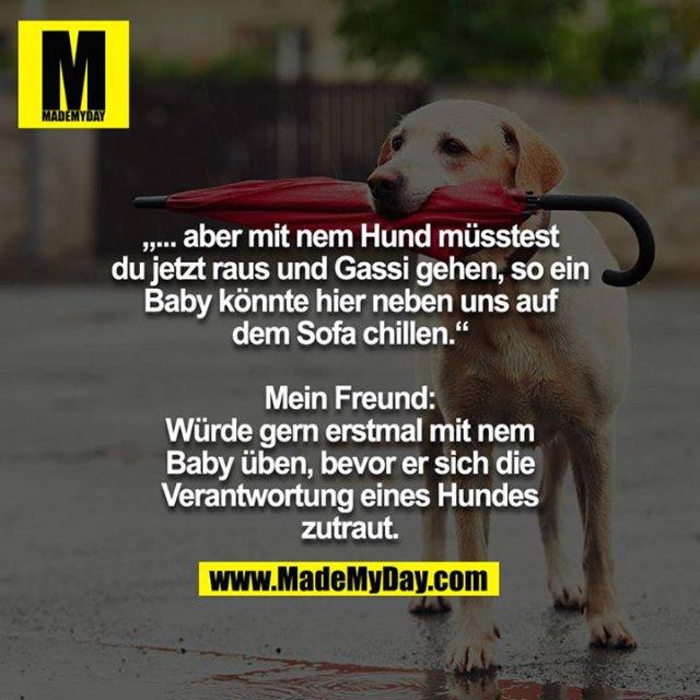 """""""... aber mit nem Hund müsstest du jetzt raus und Gassi gehen, so ein Baby könnte hier neben uns auf dem Sofa chillen.""""<br /> <br /> Mein Freund: Würde gern erstmal mit nem Baby üben, bevor er sich die Verantwortung eines Hundes zutraut."""