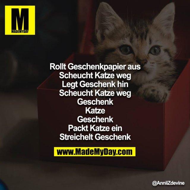 Rollt Geschenkpapier aus<br /> Scheucht Katze weg<br /> Legt Geschenk hin<br /> Scheucht Katze weg<br /> Geschenk<br /> Katze<br /> Geschenk<br /> Packt Katze ein<br /> Streichelt Geschenk