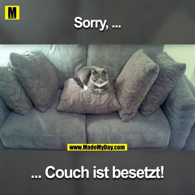 Sorry ...<br /> ... Couch ist besetzt!