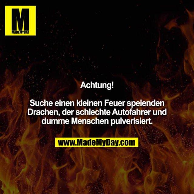 Achtung!<br /> <br /> Suche einen kleinen Feuer speienden Drachen, der schlechte Autofahrer und dumme Menschen pulverisiert.