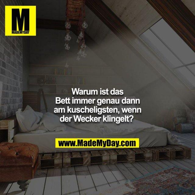 Warum ist das Bett immer genau dann am kuscheligsten, wenn der Wecker klingelt?