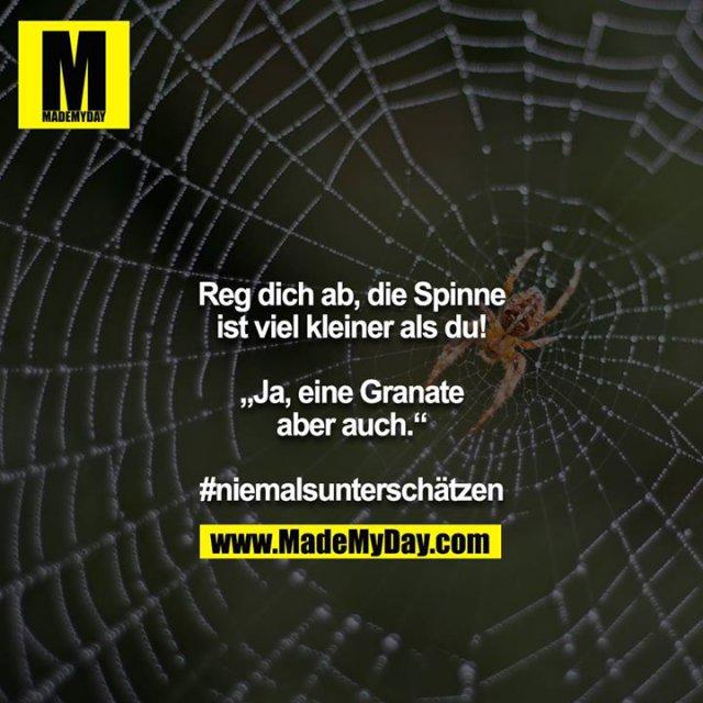 """Reg dich ab, die Spinne ist viel kleiner als du!<br /> <br /> ,,Ja, eine Granate aber auch.""""<br /> <br /> #niemalsunterschätzen"""