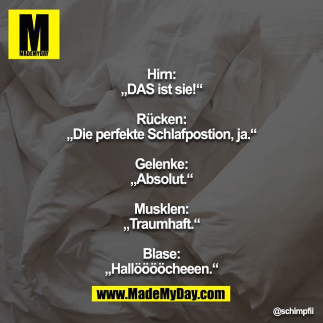"""Hirn: """"DAS ist sie!""""<br /> <br /> Rücken: """"Die perfekte Schlafpostion, ja.""""<br /> <br /> Gelenke: """"Absolut.""""<br /> <br /> Musklen: """"Traumhaft.""""<br /> <br /> Blase: """"Hallööööcheeen."""""""