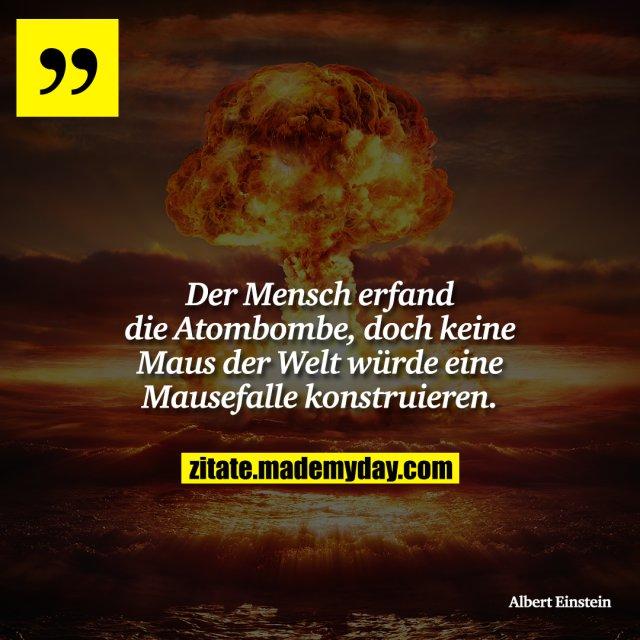Der Mensch erfand die Atombombe, doch keine Maus der Welt würde eine Mausefalle konstruieren.