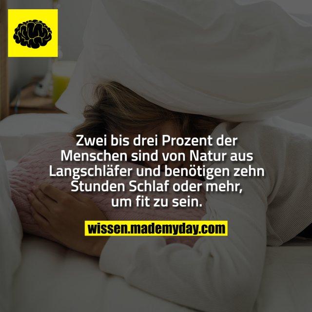 Zwei bis drei Prozent der Menschen sind von Natur aus Langschläfer und benötigen zehn Stunden Schlaf oder mehr, um fit zu sein.