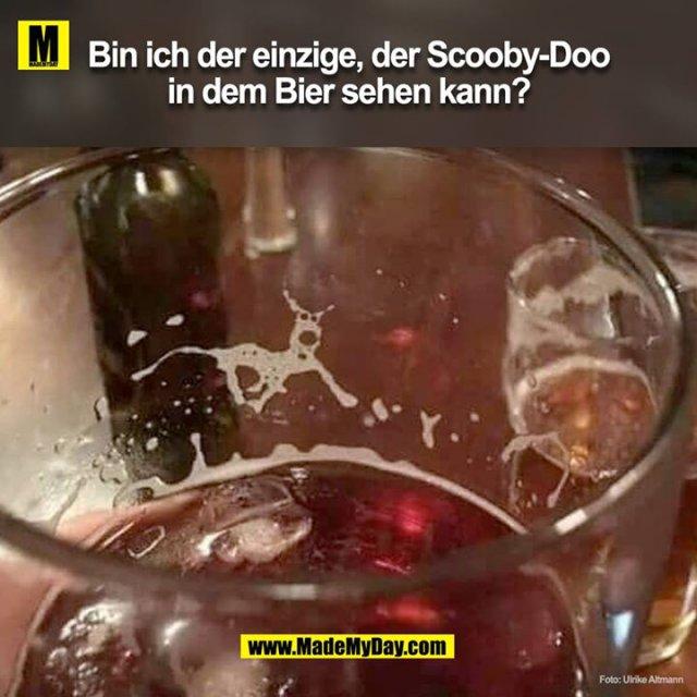 Bin ich der einzige der ScoobyDoo in dem Bier sehen kann?<br />