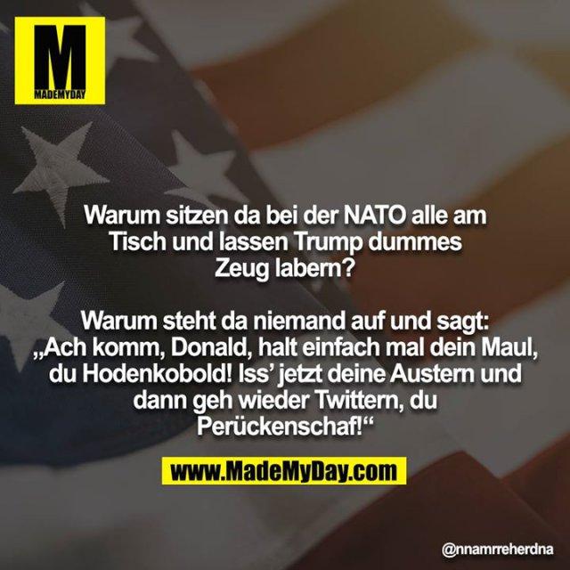"""Warum sitzen da bei der NATO alle am Tisch und lassen Trump dummes Zeug labern?<br /> <br /> Warum steht da niemand auf und sagt: """"Ach komm, Donald, halt einfach mal dein Maul, du Hodenkobold! Iss' jetzt deine Austern und dann geh wieder Twittern, du Perückenschaf!"""""""