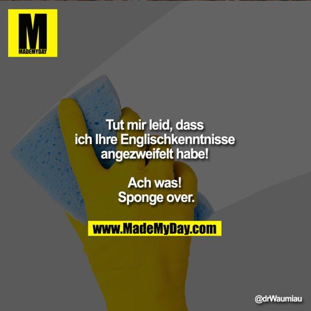 Tut mir leid, dass ich Ihre <br /> Englischkenntnisse angezweifelt habe! <br />     <br /> Ach was! Sponge over.
