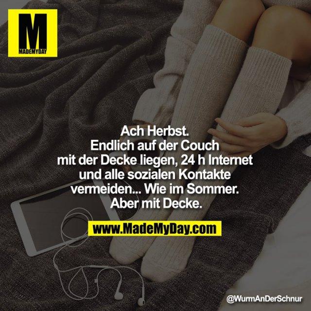 Ach Herbst. Endlich auf der Couch mit der Decke liegen, 24 h Internet und alle sozialen Kontakte vermeiden... Wie im Sommer. Aber mit Decke.