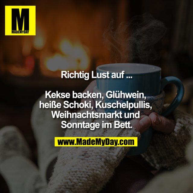 Richtig Lust auf ...<br /> <br /> Kekse backen, Glühwein, heiße Schoki, Kuschelpullis, Weihnachtsmarkt und Sonntage im Bett.