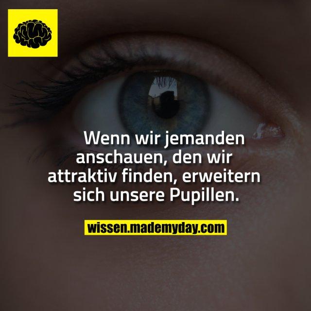 Wenn wir jemanden<br /> anschauen, den wir<br /> attraktiv finden, erweitern<br /> sich unsere Pupillen.