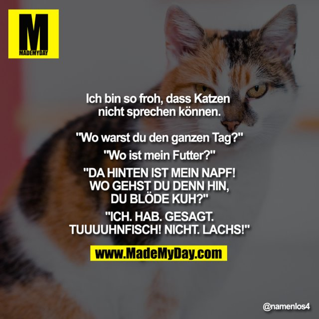 """Ich bin so froh, dass Katzen nicht sprechen können.<br /> <br /> """"Wo warst du den ganzen Tag?""""<br /> """"Wo ist mein Futter?""""<br /> """"DA HINTEN IST MEIN NAPF!<br /> WO GEHST DU DENN HIN,<br /> DU BLÖDE KUH?""""<br /> """"ICH. HAB. GESAGT.<br /> TUUUUHNFISCH! NICHT. LACHS!"""""""