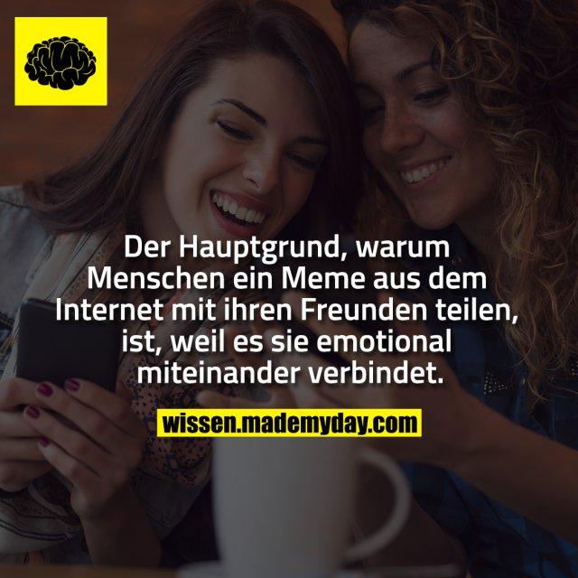Der Hauptgrund, warum Menschen ein Meme aus dem Internet mit ihren Freunden teilen, ist, weil es sie emotional miteinander verbindet.