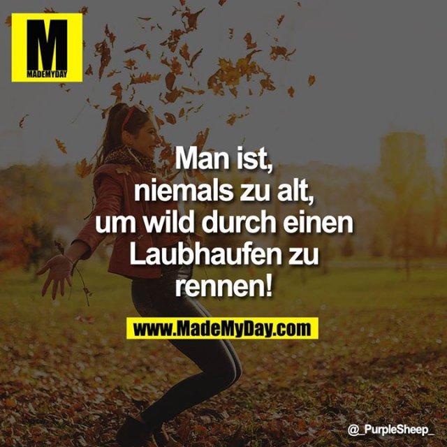 Man ist<br /> niemals zu alt,<br /> um wild durch einen<br /> Laubhaufen zu<br /> rennen!