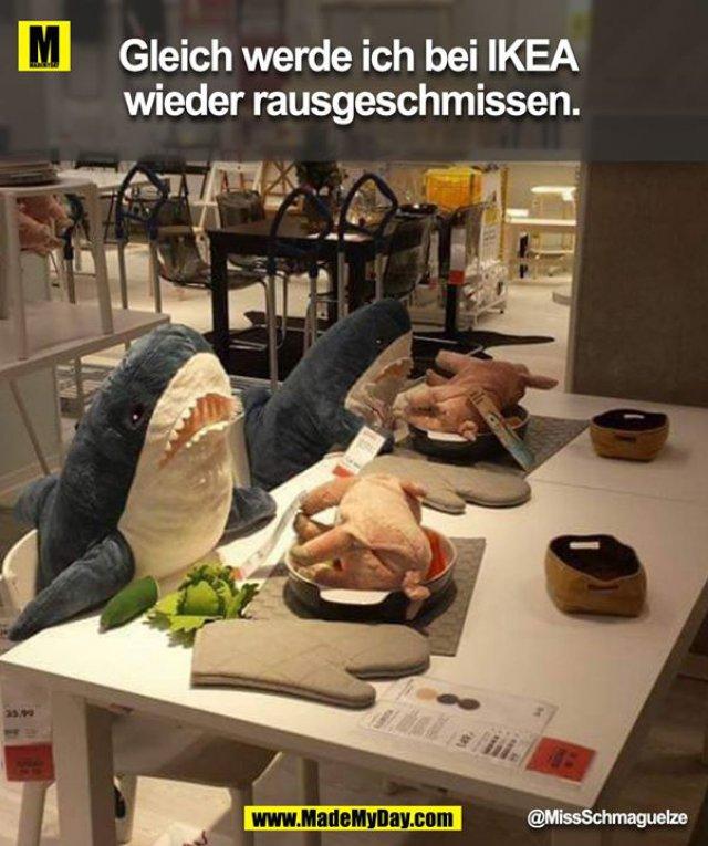 Gleich werde ich bei IKEA wieder rausgeschmissen.