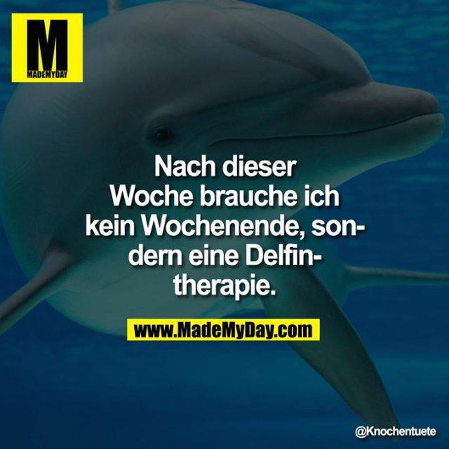 Nach dieser<br /> Woche brauche ich<br /> kein Wochenende, son-<br /> dern eine Delfin-<br /> therapie.