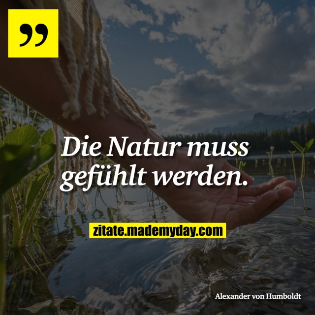 Die Natur muss gefühlt werden.<br />