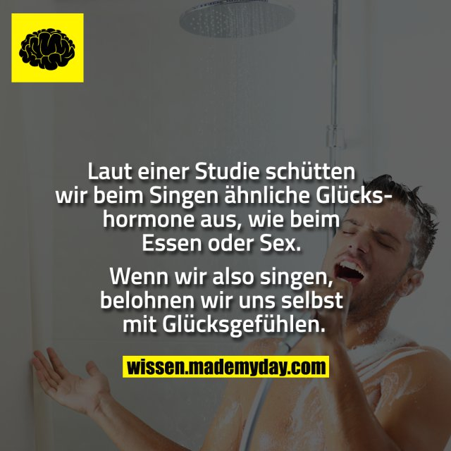 Laut einer Studie schütten wir beim Singen ähnliche Glückshormone aus, wie beim Essen oder Sex. Wenn wir also singen, belohnen wir uns selbst mit Glücksgefühlen.