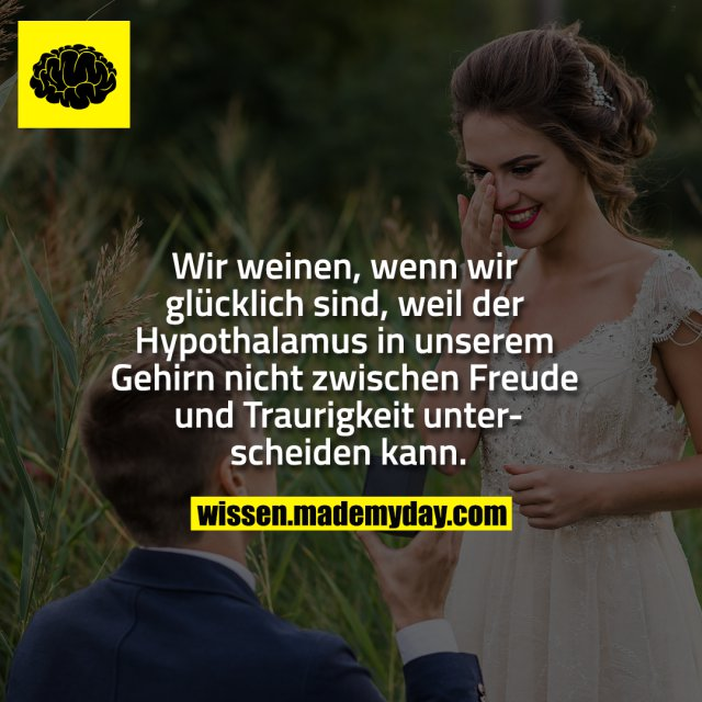 Wir weinen, wenn wir glücklich sind, weil der Hypothalamus in unserem Gehirn nicht zwischen Freude und Traurigkeit unterscheiden kann.