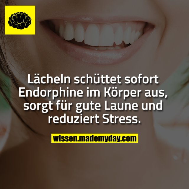 Lächeln schüttet sofort Endorphine im Körper aus, sorgt für gute Laune und reduziert Stress.