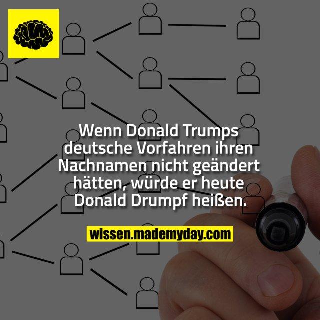 Wenn Donald Trumps deutsche Vorfahren ihren Nachnamen nicht geändert hätten, würde er heute Donald Drumpf heißen.