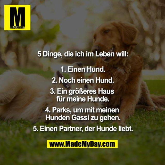 5 Dinge, die ich im Leben will:<br /> <br /> 1. Einen Hund.<br /> 2. Noch einen Hund.<br /> 3. Ein größeres Haus für meine Hunde.<br /> 4. Parks, um mit meinen Hunden Gassi zu gehen.<br /> 5. Einen Partner, der Hunde liebt.