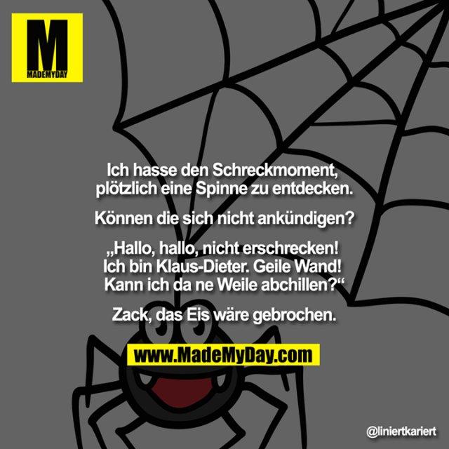 """Ich hasse den Schreckmoment, plötzlich eine Spinne zu entdecken.<br /> <br /> Können die sich nicht ankündigen?<br /> <br /> """"Hallo, hallo, nicht erschrecken! Ich bin Klaus-Dieter. Geile Wand! Kann ich da ne Weile abchillen?""""<br /> <br /> Zack, das Eis wäre gebrochen."""