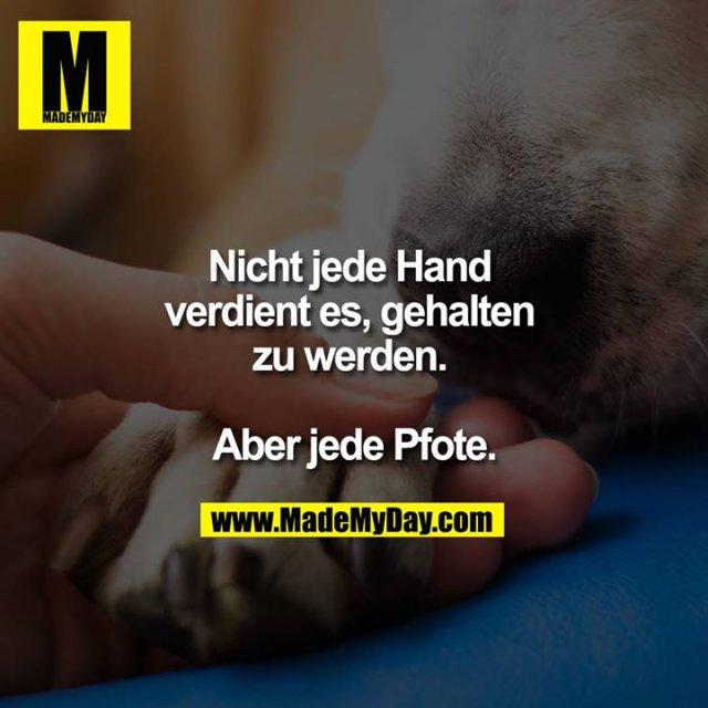Nicht jede Hand verdient es gehalten zu werden. <br /> <br /> Aber jede Pfote.