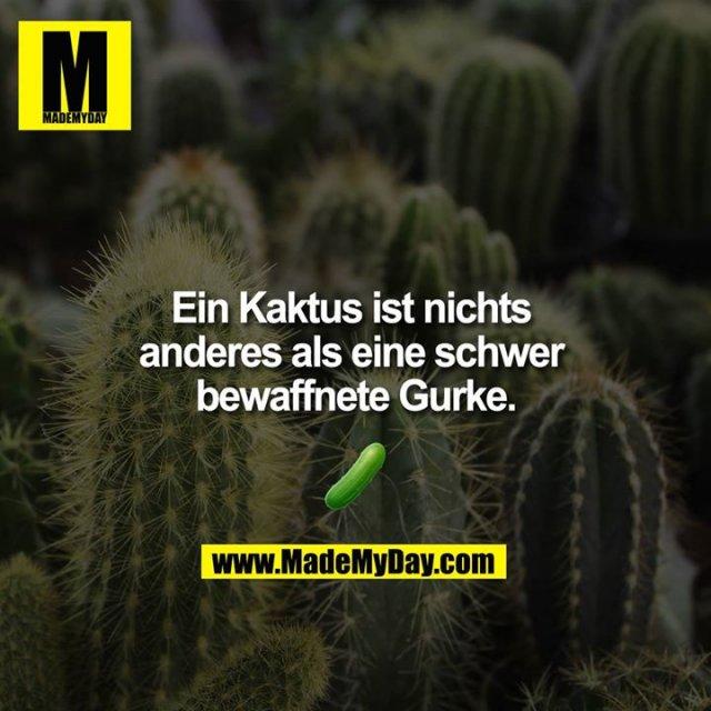 Ein Kaktus ist nichts anderes als eine schwer bewaffnete Gurke<br />