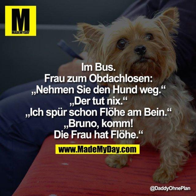 """Im Bus. Frau zum Obdachlosen:<br /> """"Nehmen Sie den Hund weg.""""<br /> """"Der tut nix.""""<br /> """"Ich spür schon Flöhe am Bein.""""<br /> """"Bruno, komm! Die Frau hat Flöhe."""""""