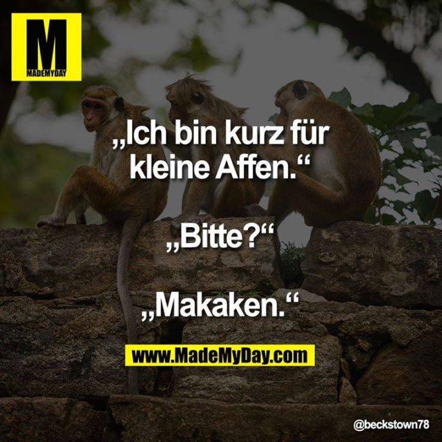"""""""Ich bin kurz für<br /> kleine Affen.""""<br /> <br /> """"Bitte?""""<br /> <br /> """"Makaken."""""""