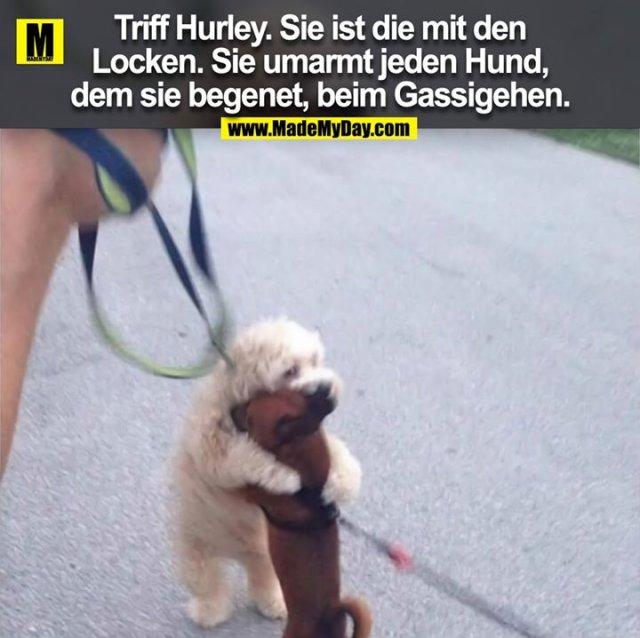 Triff Hurley. Sie ist die mit den<br /> Locken. Sie umarmt jeden Hund,<br /> dem sie begenet, beim Gassigehen.