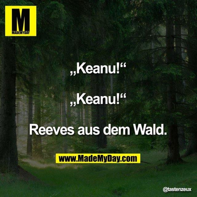 """Keanu!""<br /> <br /> ""Keanu!""<br /> <br /> Reeves aus dem Wald."