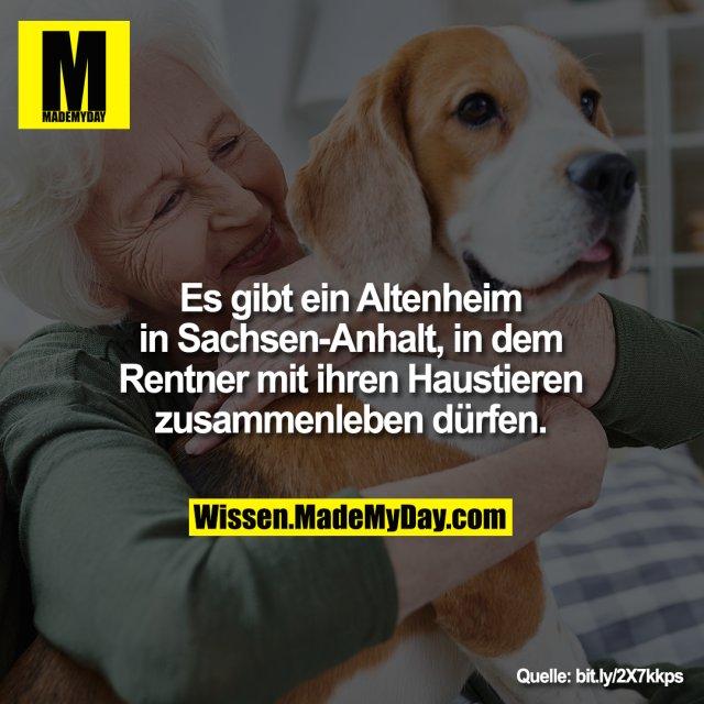 Es gibt ein Altenheim<br /> in Sachsen-Anhalt, in dem<br /> Rentner mit ihren Haustieren<br /> zusammenleben dürfen.