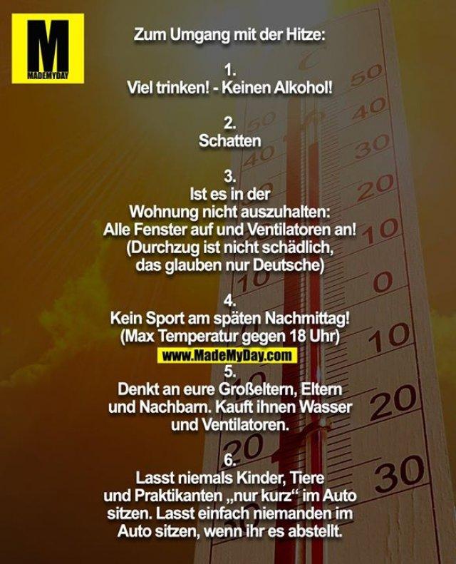 """Zum Umgang mit der Hitze:<br /> <br /> 1.<br /> Viel trinken! - Keinen Alkohol!<br /> <br /> 2.<br /> Schatten<br /> <br /> 3.<br /> Ist es in der<br /> Wohnung nicht auszuhalten:<br /> Alle Fenster auf und Ventilatoren an!<br /> (Durchzug ist nicht schädlich,<br /> das glauben nur Deutsche)<br /> <br /> 4.<br /> Kein Sport am späten Nachmittag!<br /> (Max Temperatur gegen 18 Uhr)<br /> <br /> 5.<br /> Denkt an eure Großeltern, Eltern<br /> und Nachbarn. Kauft ihnen Wasser<br /> und Ventilatoren.<br /> <br /> 6.<br /> Lasst niemals Kinder, Tiere<br /> und Praktikanten """"nur kurz"""" im Auto<br /> sitzen. Lasst einfach niemanden im<br /> Auto sitzen, wenn ihr es abstellt."""