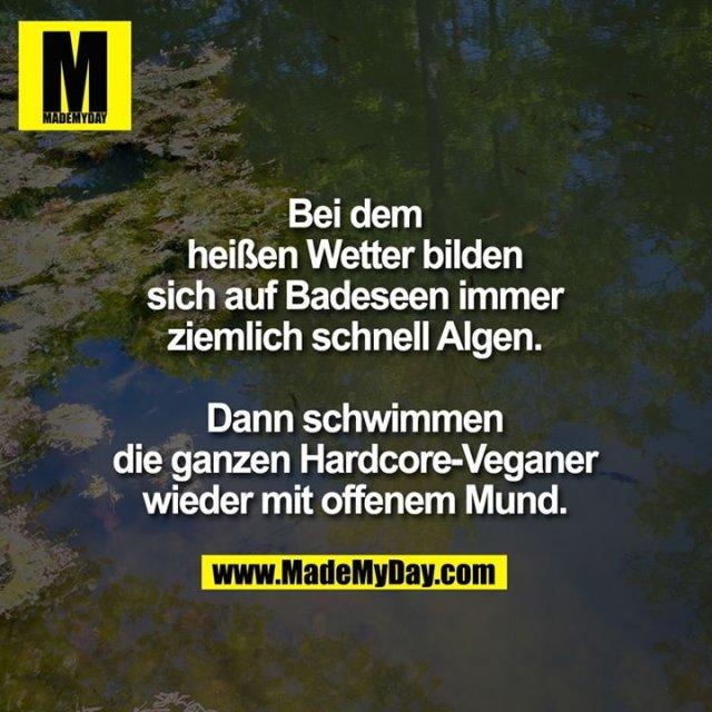 Bei dem heißen Wetter bilden sich auf Badeseen immer ziemlich schnell Algen.<br /> Dann schwimmen die ganzen Hardcore-Veganer wieder mit offenem Mund.