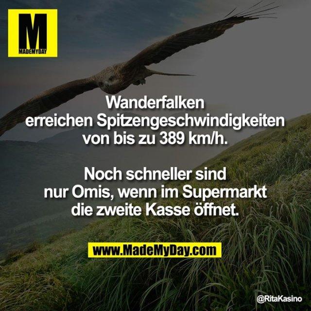 Wanderfalken erreichen Spitzengeschwindigkeiten von bis zu 389 km/h.<br /> Noch schneller sind nur Omis, wenn im Supermarkt die zweite Kasse öffnet.