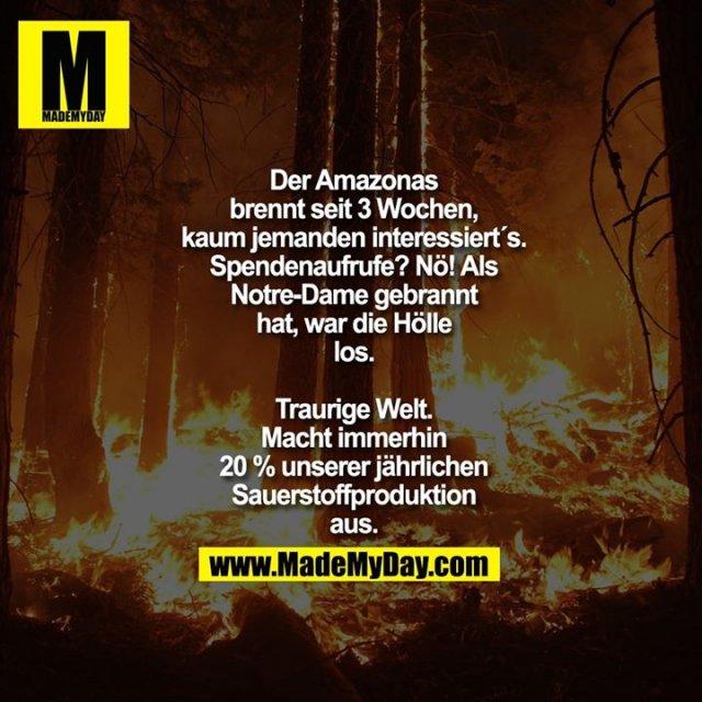 Der Amazonas<br /> brennt seit 3 Wochen,<br /> kaum jemanden interessiert´s.<br /> Spendenaufrufe? Nö! Als<br /> Notre-Dame gebrannt<br /> hat, war die Hölle<br /> los.<br /> <br /> Traurige Welt.<br /> Macht immerhin<br /> 20 % unserer jährlichen<br /> Sauerstoffproduktion<br /> aus.