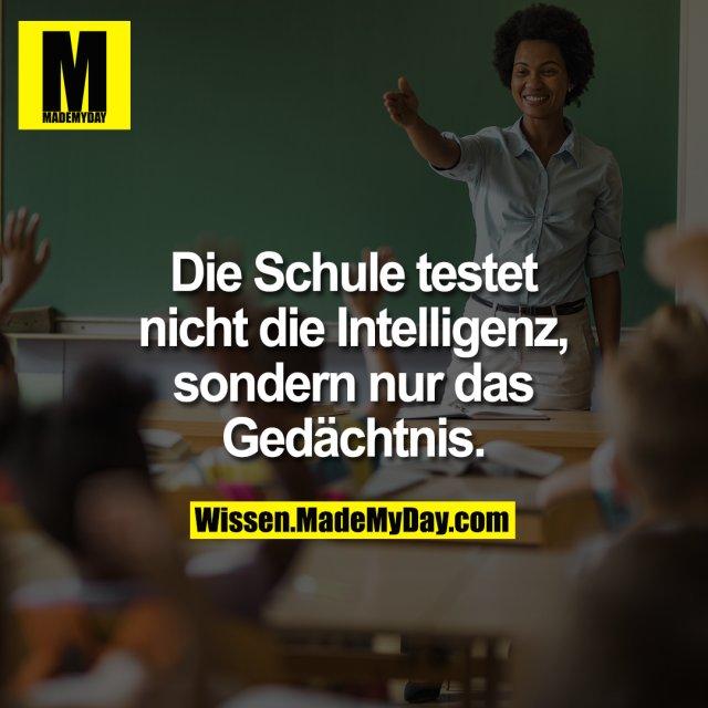 Die Schule testet<br /> nicht die Intelligenz, sondern<br /> nur das Gedächtnis.