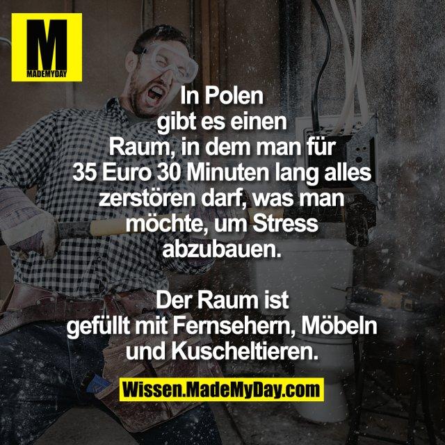 In Polen gibt es einen Raum, in dem<br /> man für 35 Euro 30 Minuten lang<br /> alles zerstören darf, was man möchte,<br /> um Stress abzubauen. Der Raum ist<br /> gefüllt mit Fernsehern, Möbeln und<br /> Kuscheltieren.