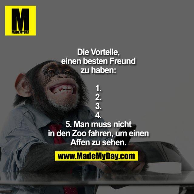 Die Vorteile, einen besten Freund zu haben:<br /> 1.<br /> 2.<br /> 3.<br /> 4.<br /> 5. Man muss nicht in den Zoo fahren, um einen Affen zu sehen.