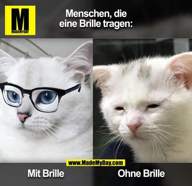 Menschen,die Brillen tragen:<br /> <br /> Mit Brille<br /> Ohne Brille