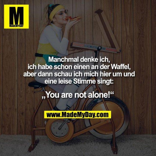 """Manchmal denke ich, ich habe schon einen an der Waffel, aber dann schau ich mich hier um und eine leise Stimme singt:<br /> """"You are not alone!"""""""
