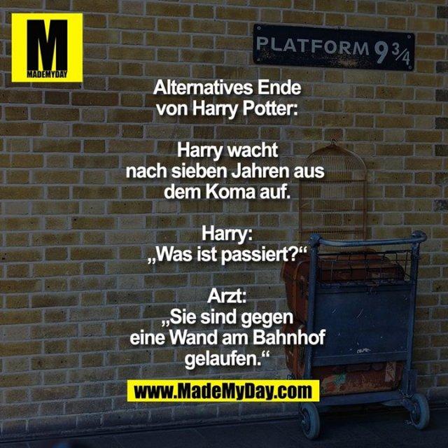 """Alternatives Ende von<br /> Harry Potter: Harry wacht<br /> nach sieben Jahren aus <br /> dem Koma auf.<br /> Harry: """"Was ist passiert?""""<br /> Arzt: """"Sie sind gegen eine<br /> Wand am Bahnhof gelaufen."""""""