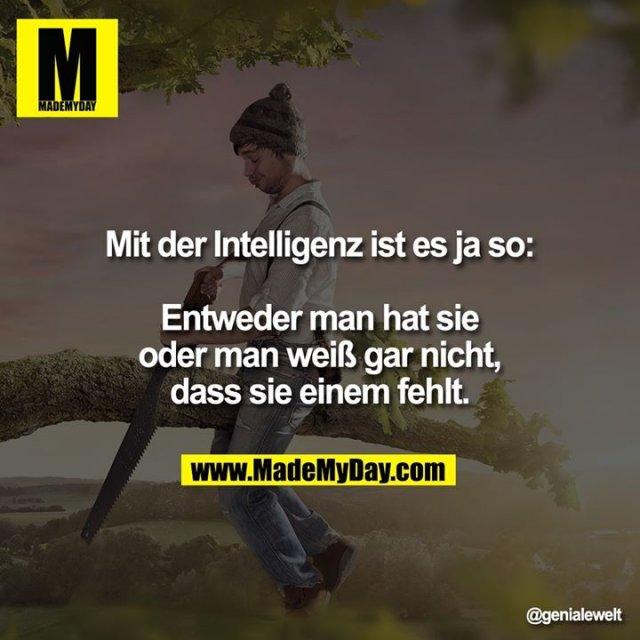 Mit der Intelligenz ist es ja so:<br /> <br /> Entweder man hat sie oder man weiß gar nicht, dass sie einem fehlt.